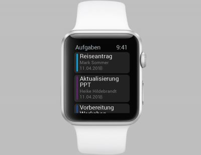 SAP portal on the Apple Watch